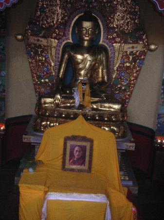The Sojourn : The Buddha at Norbulingka Institute
