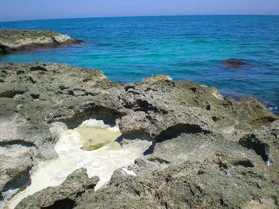 Puglia, อิตาลี: Rocky shores near Monopoli