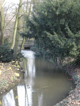 Dorint Kongresshotel Dusseldorf/Neuss: Stream running through park adjacent to hotel