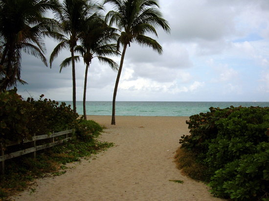 Hollywood Beach: Surf Road beach entrance-Flowers Section