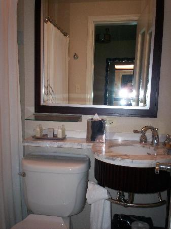 Hilton Orrington/Evanston: Bathroom