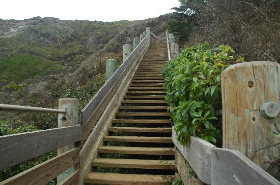 Gray Whale Cove State Beach: Looking up a Bunch of Stairs