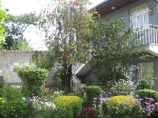 Z Guest House : Garden