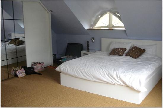 Rothman Manor: Bedroom in XL Suite