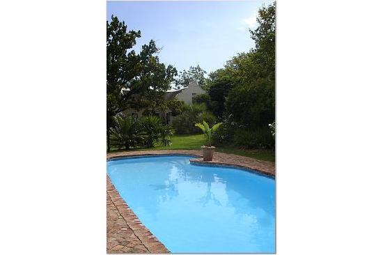 Rothman Manor: Pool