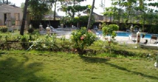 Carina Beach Resort: CBR pool