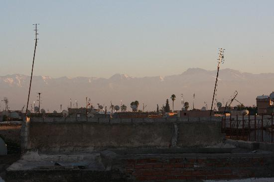Riad Safa: View from the rooftop