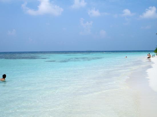 Bandos Maldives: La plage