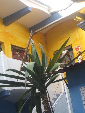 Casa de Don Pablo Hostel : La parte de arriba
