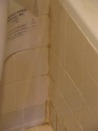 Allamanda Laguna Phuket: Tile in the shower