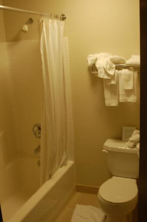 Quality Inn Gresham: Bathroom