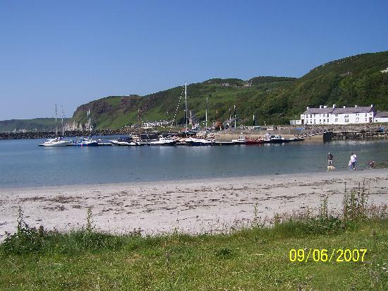 Rathlin Island: view of harbour from tearoom