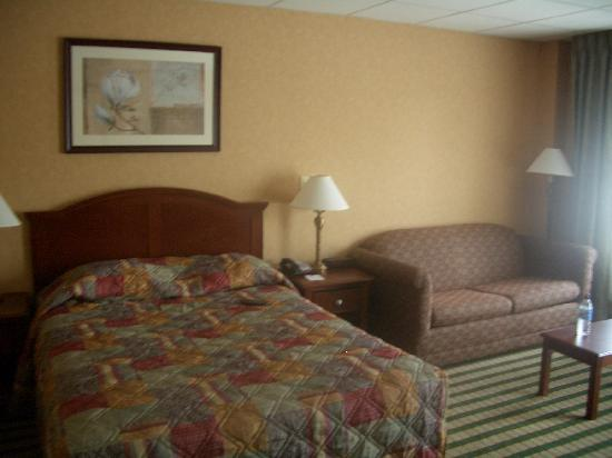 Clarion Hotel Palmer Inn: Very comfortable queen and sofabed