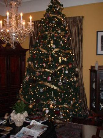 1896 o malley house bed and breakfast o malley house 12ft christmas tree