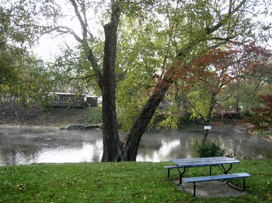 Lloyds on the River Country Inn: Picnic Tables Along the River for Outdoor Dining