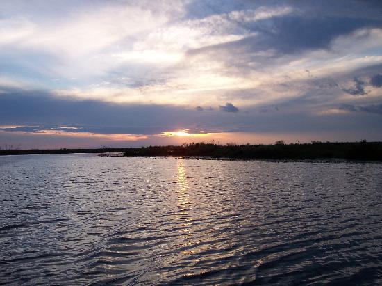Corrientes, Argentine : Iberá - Paisaje / Lansdscape