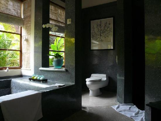 The Samaya Bali Seminyak: unsusual view from here, but you'll never want to go back to your old habits...