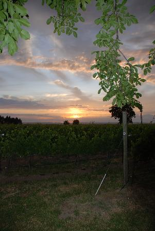 The Inn At Abeja: Sunset over Abeja Inn vineyard