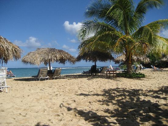 Jamaica Inn : The Beach