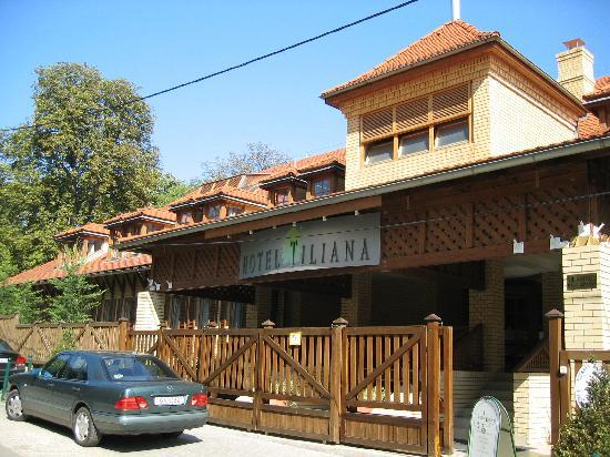 Hotel Tiliana: Hotel Eingang