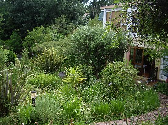 The Nest Guest House : the view of the garden from our cottage
