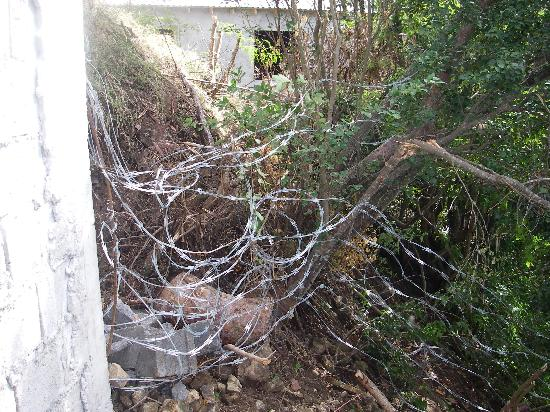 Belmont to Jack's Bar Razor-Wire, Bequia