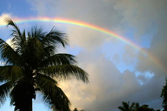 Mongoose Apartments: Rainbow from veranda