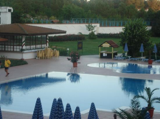 Pelican Hotel : pool