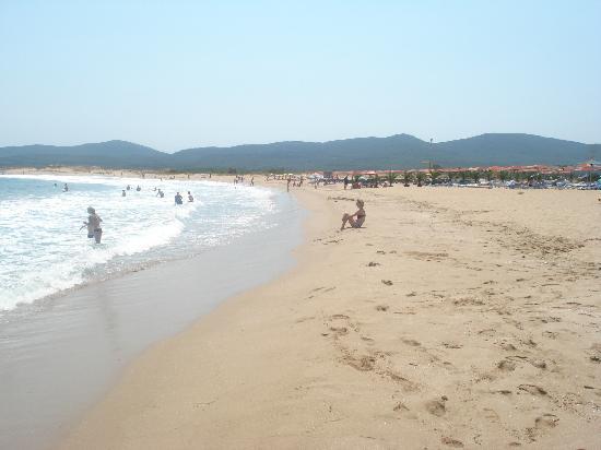 Pelican Hotel : lush beach