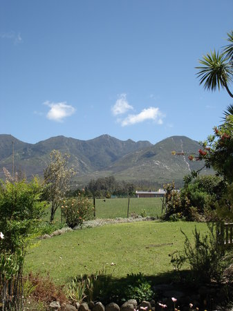 Malvern Manor Country Guest House: Outeniqua Mountains