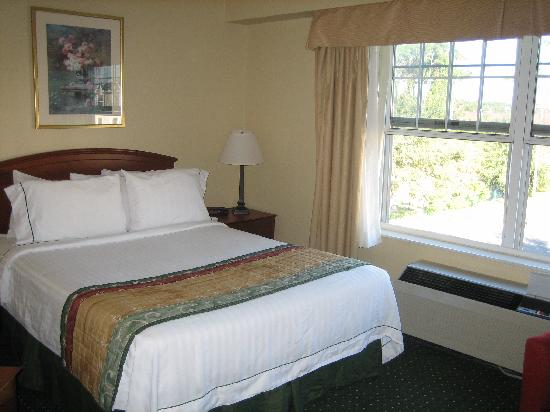 TownePlace Suites St. Petersburg Clearwater: Queen Bed