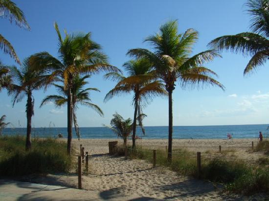 Best Florida Resort : beach behind the resort