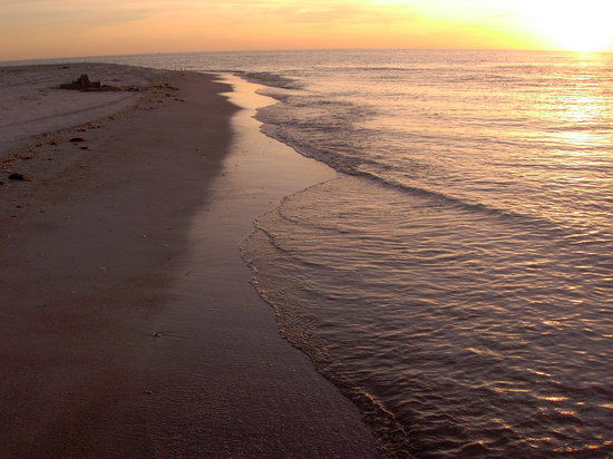 Cayo Costa State Park: Sunset Shore