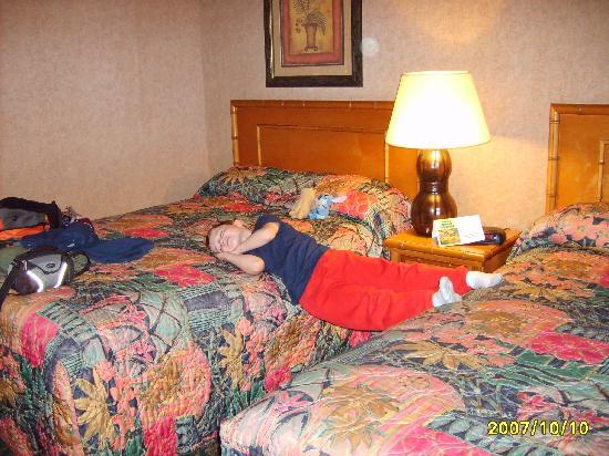 Best Western Plus Park Place Inn - Mini Suites : Good sized room