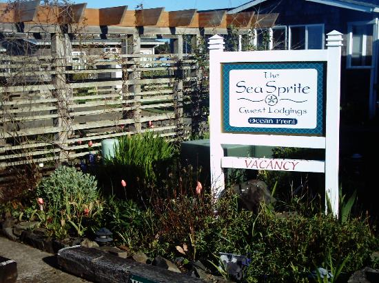 Sea Sprite At Haystack Rock Welcome To The