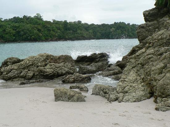 Issimo Suites Boutique Hotel and Spa: Manuel Antonio National park