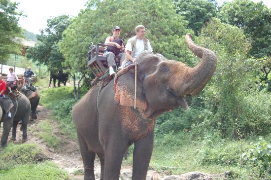 Golden Cupids Hotel: Excursion à dos d'éléphant