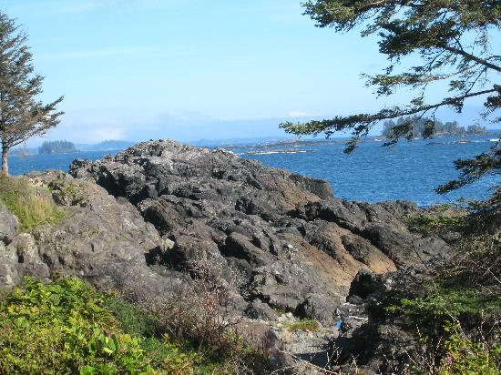 Two Eagles Lodge: View at the Pacific Rim Trail