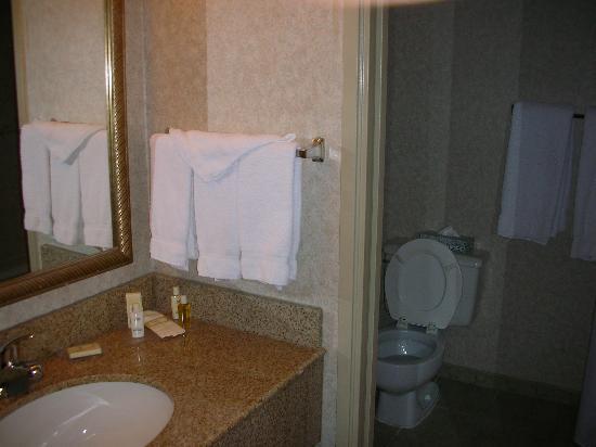 Plaza Hotel : Bathroom