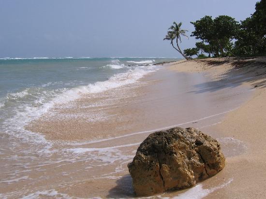 Guadeloupe: Le Moule (plage de l'Autre bord)