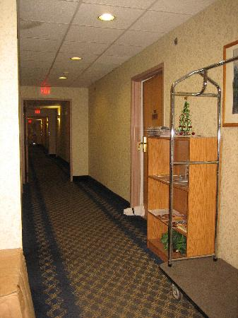 Microtel Inn by Wyndham Albany Airport : Microtel Inn Latham, NY - Ground floor hallway