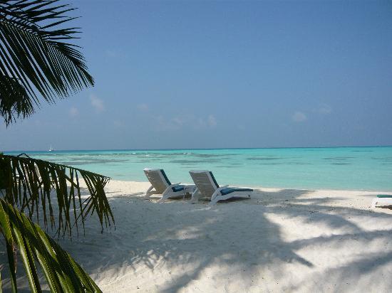 Meeru Island Resort & Spa : nos transats