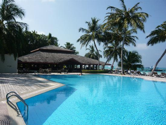 Meeru Island Resort & Spa : piscine