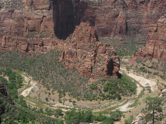 Observation Point: The Pipe Organ and Virgin River
