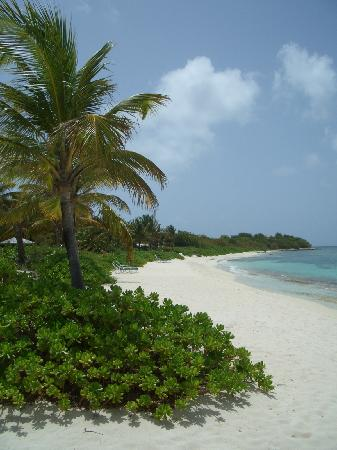 Jumby Bay, A Rosewood Resort: Pasture Beach