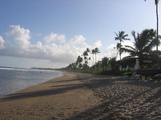 Summerville Beach Resort : private beach