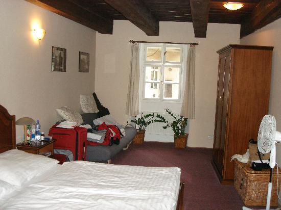 Hotel U Tri Bubnu: Room #18 (with flash)