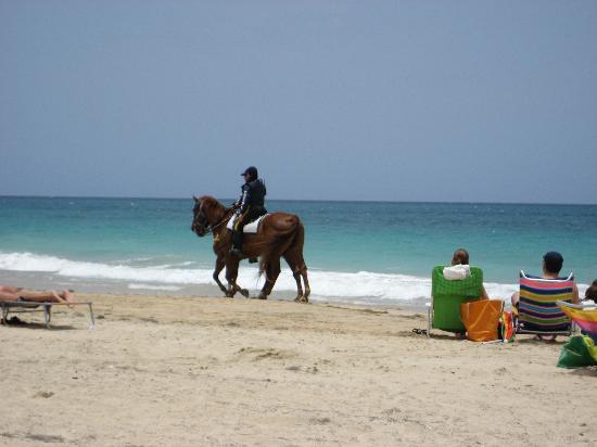 Ocean Park Beach : Police patrolling the beach
