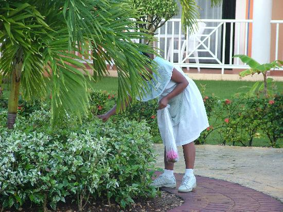 Grand Bahia Principe Bavaro: A Maid picking flowers for a room