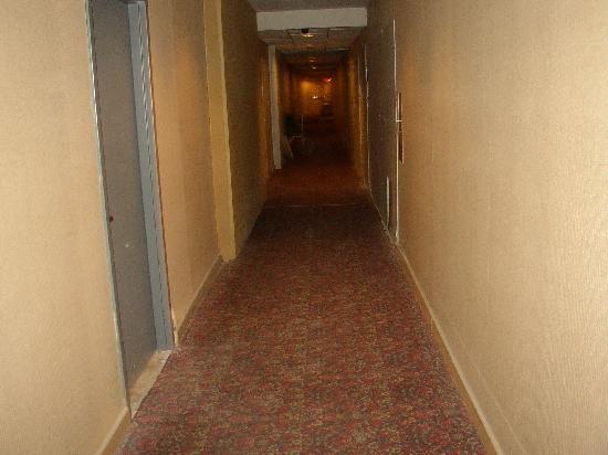 Hilton Garden Inn Detroit-Southfield: Hallway to elevator